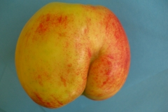 Apfel4